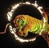 Цирки в Рыбной Слободе